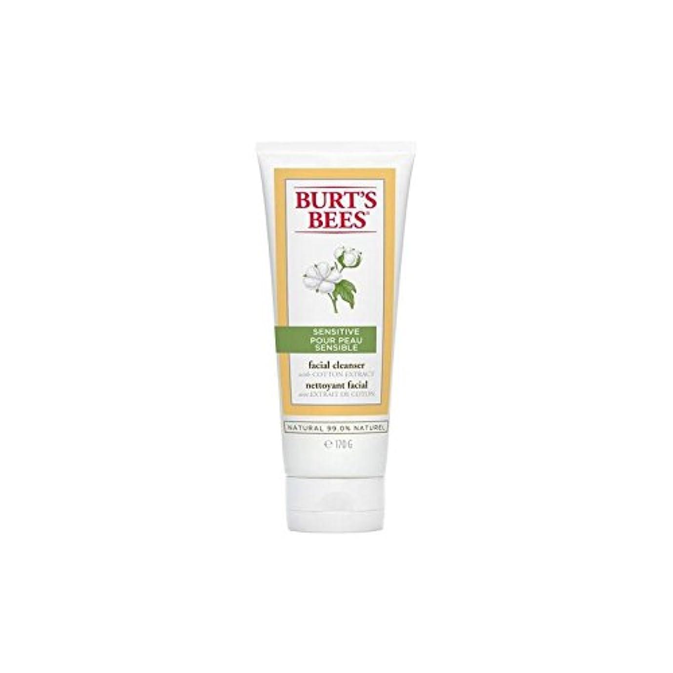 闘争壁鉛筆バーツビー敏感な洗顔料の170グラム x4 - Burt's Bees Sensitive Facial Cleanser 170G (Pack of 4) [並行輸入品]