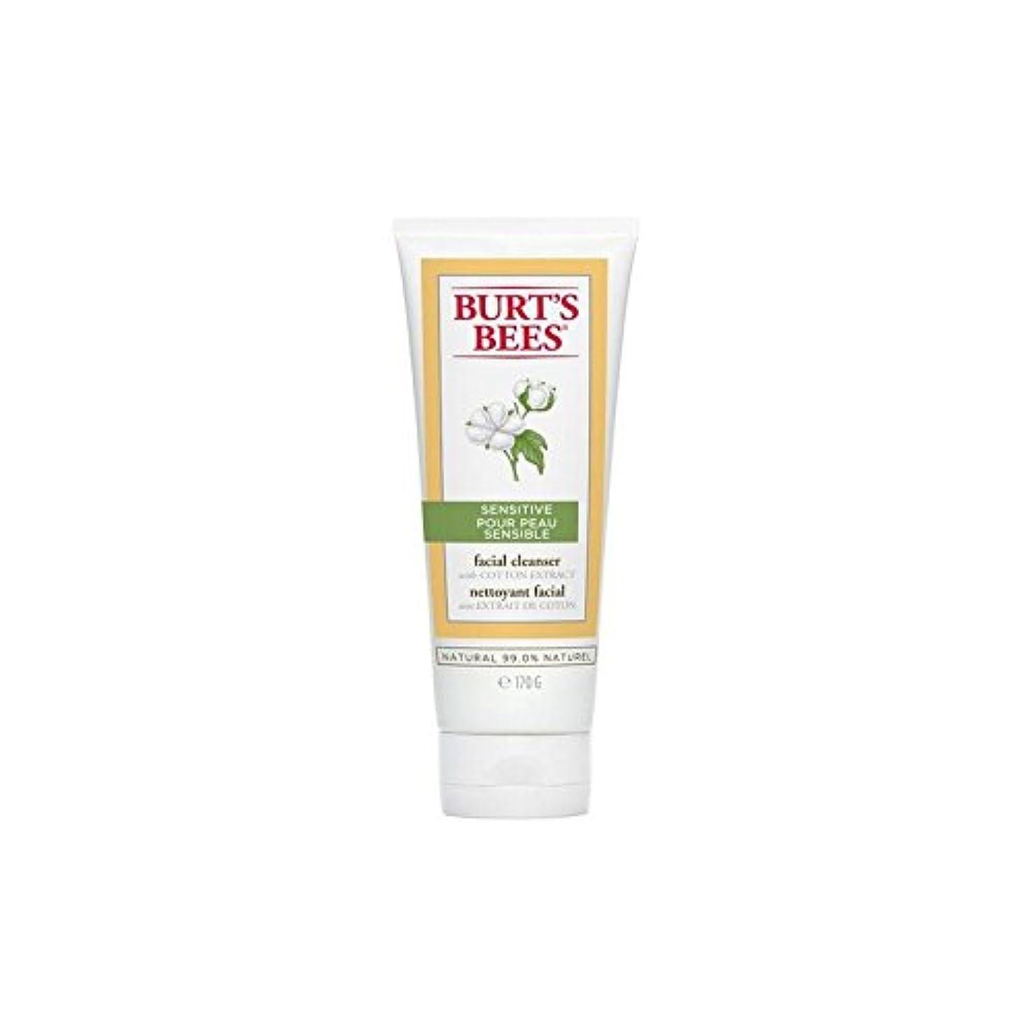 ハリケーン提供考古学的なバーツビー敏感な洗顔料の170グラム x2 - Burt's Bees Sensitive Facial Cleanser 170G (Pack of 2) [並行輸入品]