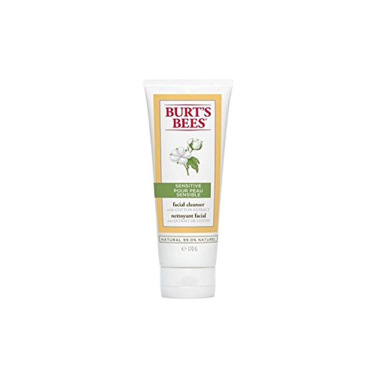 スノーケル症候群グリーンバックバーツビー敏感な洗顔料の170グラム x4 - Burt's Bees Sensitive Facial Cleanser 170G (Pack of 4) [並行輸入品]