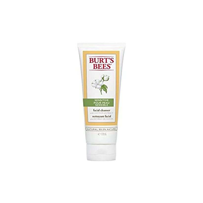 お金ゴムギター傷つきやすいBurt's Bees Sensitive Facial Cleanser 170G - バーツビー敏感な洗顔料の170グラム [並行輸入品]