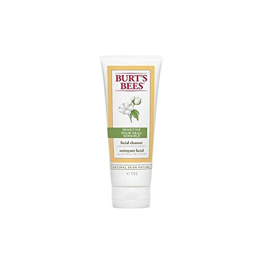 副詞定刻カテゴリーバーツビー敏感な洗顔料の170グラム x4 - Burt's Bees Sensitive Facial Cleanser 170G (Pack of 4) [並行輸入品]