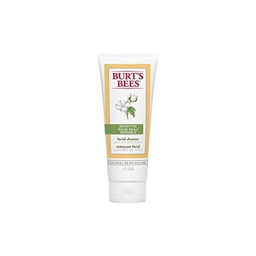 鼓舞する偉業伝染病Burt's Bees Sensitive Facial Cleanser 170G - バーツビー敏感な洗顔料の170グラム [並行輸入品]