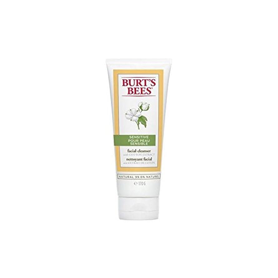 コウモリドライバ工夫するバーツビー敏感な洗顔料の170グラム x4 - Burt's Bees Sensitive Facial Cleanser 170G (Pack of 4) [並行輸入品]