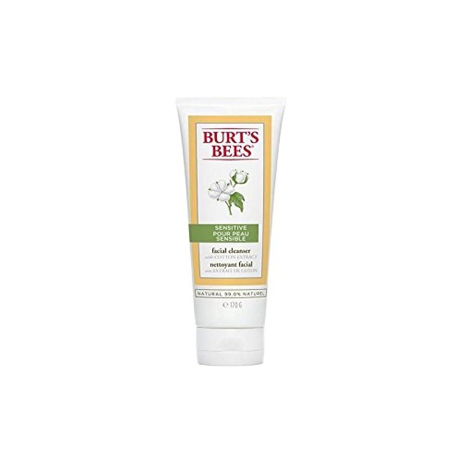 砂利ズームインする匹敵しますバーツビー敏感な洗顔料の170グラム x4 - Burt's Bees Sensitive Facial Cleanser 170G (Pack of 4) [並行輸入品]