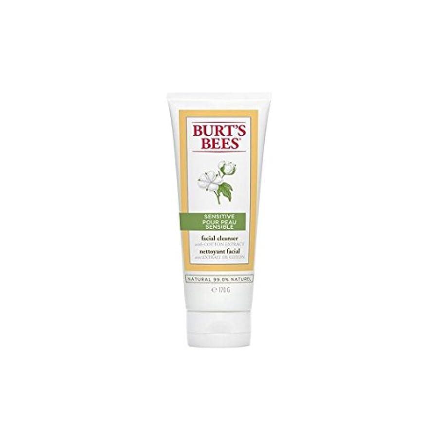 サスティーン絶滅した矢じりBurt's Bees Sensitive Facial Cleanser 170G - バーツビー敏感な洗顔料の170グラム [並行輸入品]