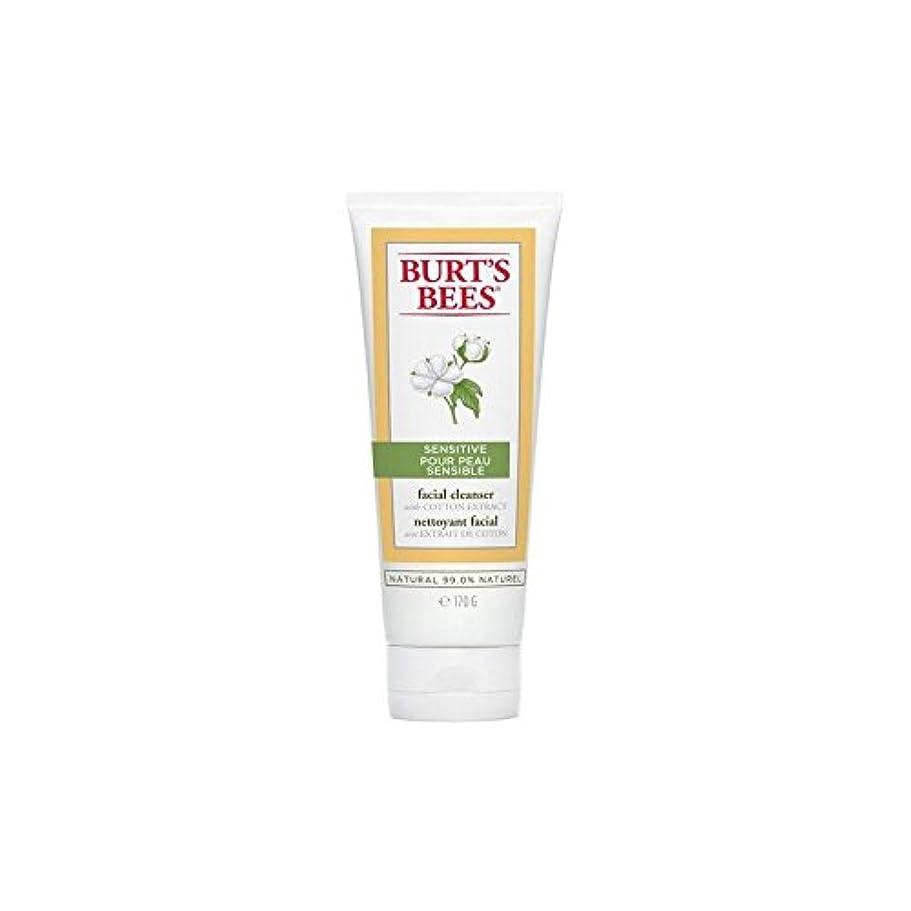 印象的移行独裁者Burt's Bees Sensitive Facial Cleanser 170G - バーツビー敏感な洗顔料の170グラム [並行輸入品]