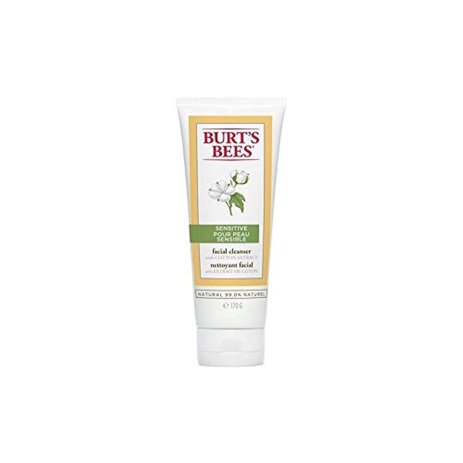 成り立つかろうじて変更バーツビー敏感な洗顔料の170グラム x4 - Burt's Bees Sensitive Facial Cleanser 170G (Pack of 4) [並行輸入品]