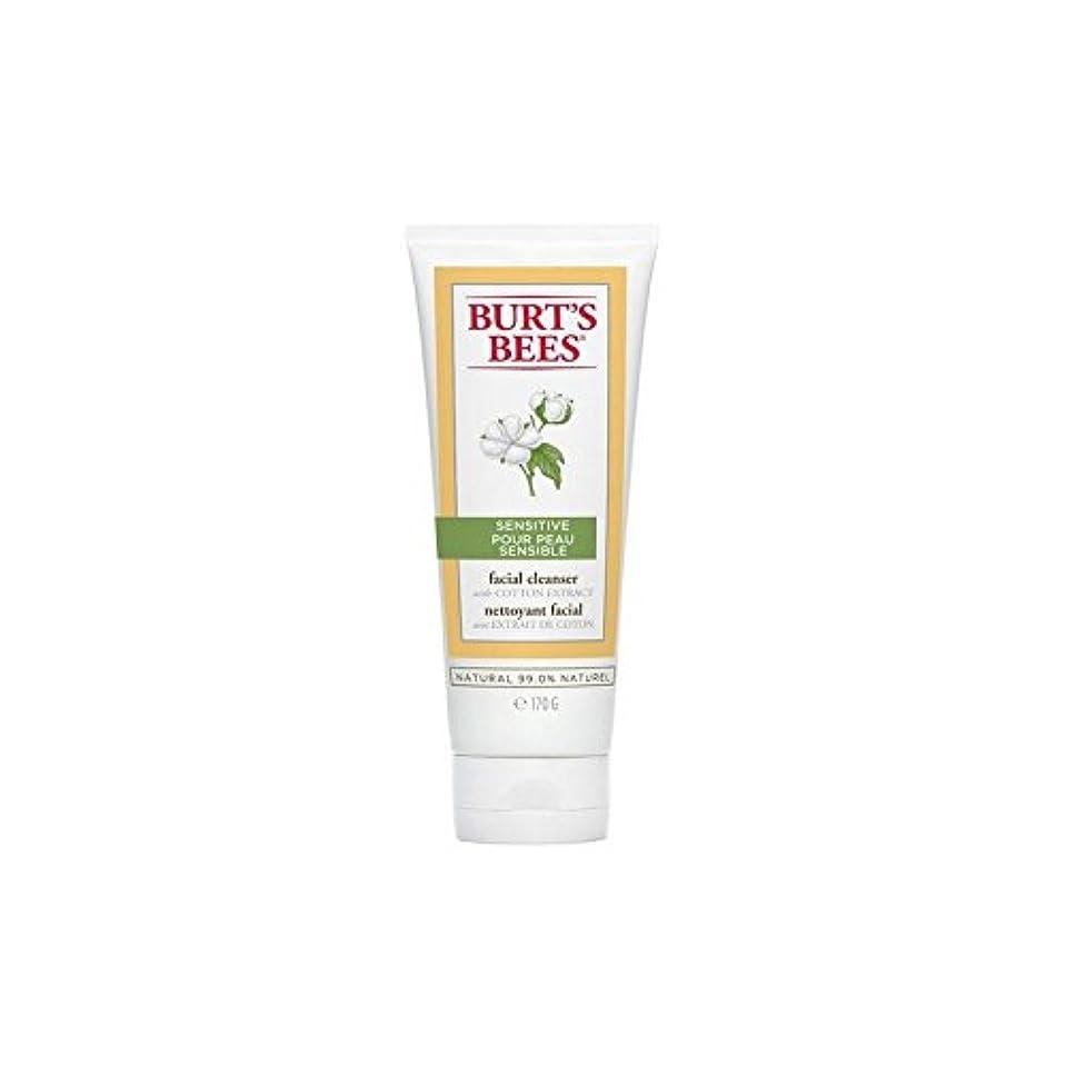 反毒待つ見習いBurt's Bees Sensitive Facial Cleanser 170G (Pack of 6) - バーツビー敏感な洗顔料の170グラム x6 [並行輸入品]