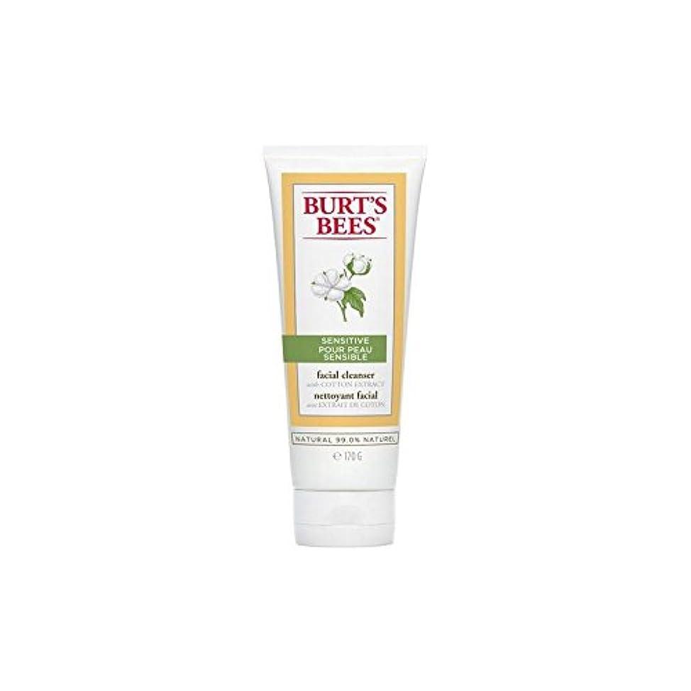 ジャニス延ばす電信Burt's Bees Sensitive Facial Cleanser 170G - バーツビー敏感な洗顔料の170グラム [並行輸入品]