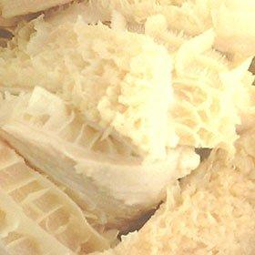 特選松阪牛専門店やまと 黒毛和牛 ハチノス (第二胃) < 焼肉・煮込み用 > 500g (3〜5名様用) 炒めものにも