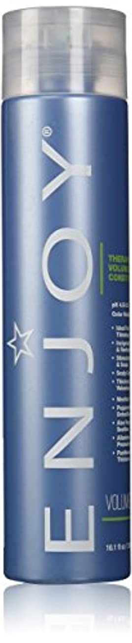 慰めロールルネッサンスTherapeutic Volumizing Conditioner 10.1 fl.oz. 300 ml