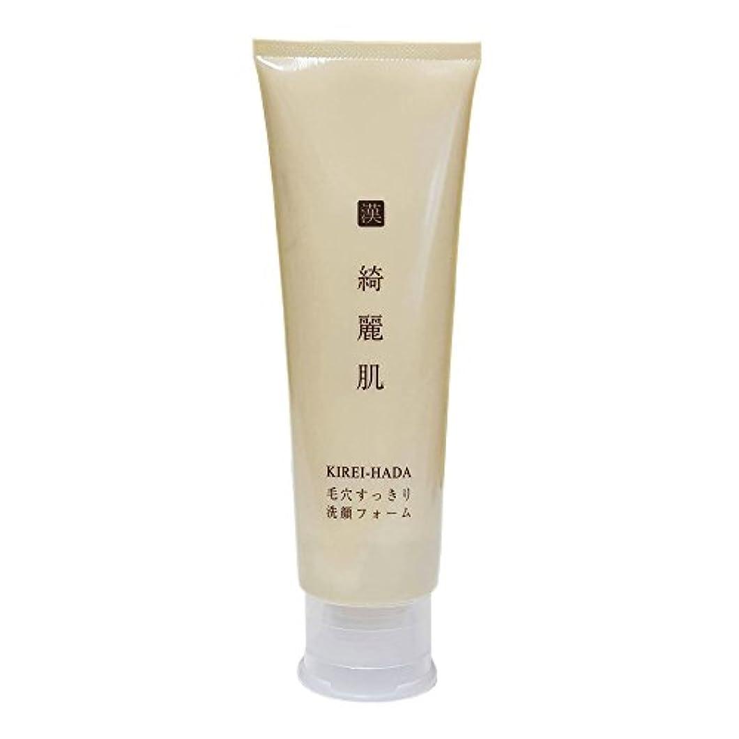 プラグ収益手数料毛穴すっきり 洗顔フォーム パラベンフリー120g