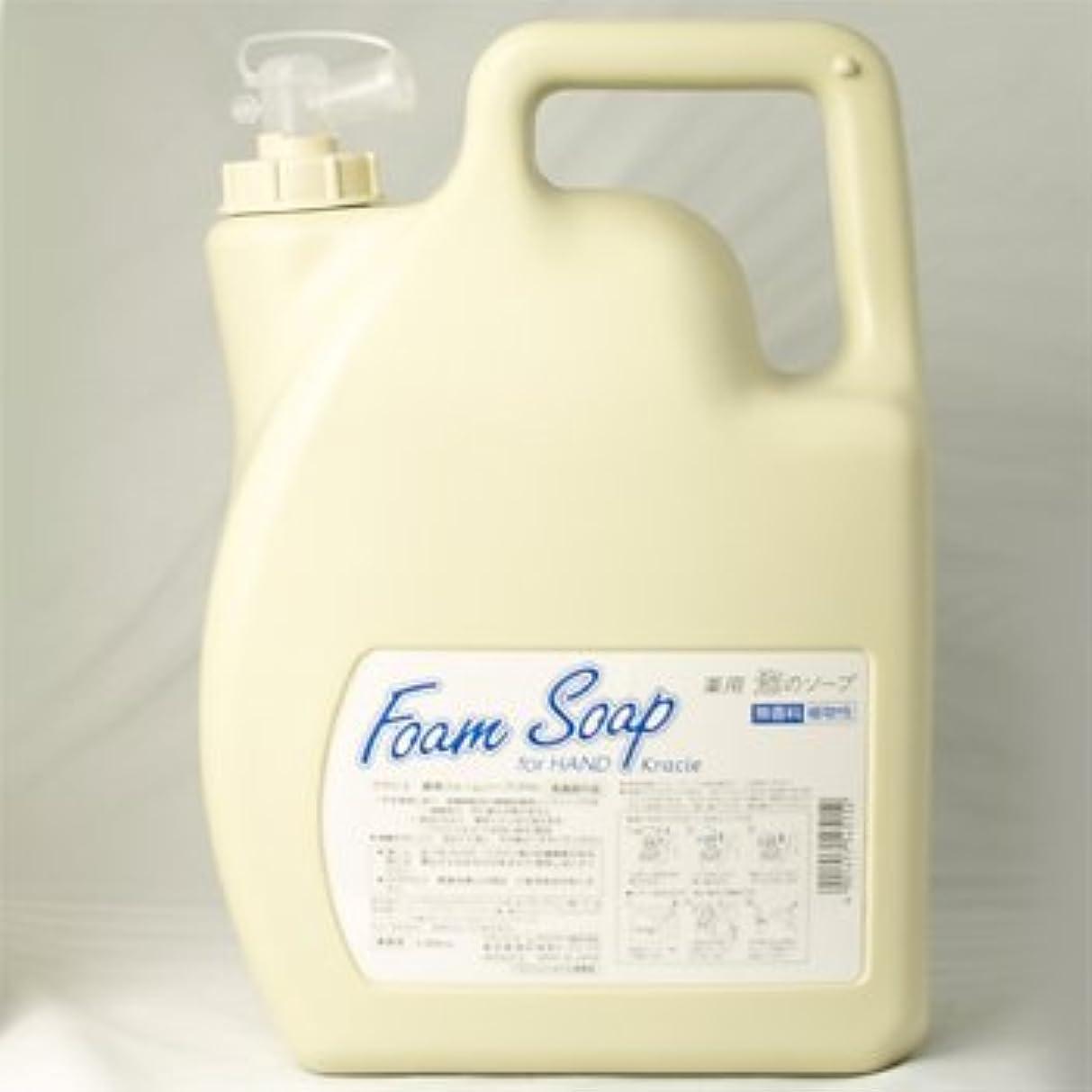 ガソリン相談するアンケートクラシエ 薬用フォームソープFH for HAND ハンドソープ 業務用5000ml