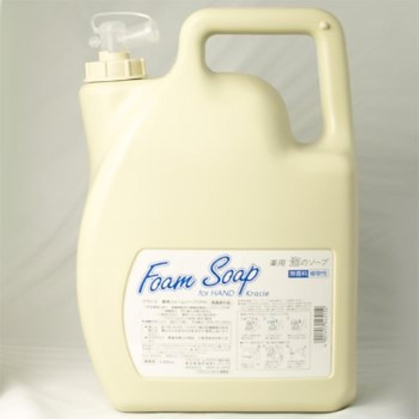有毒二十虫クラシエ 薬用フォームソープFH for HAND ハンドソープ 業務用5000ml