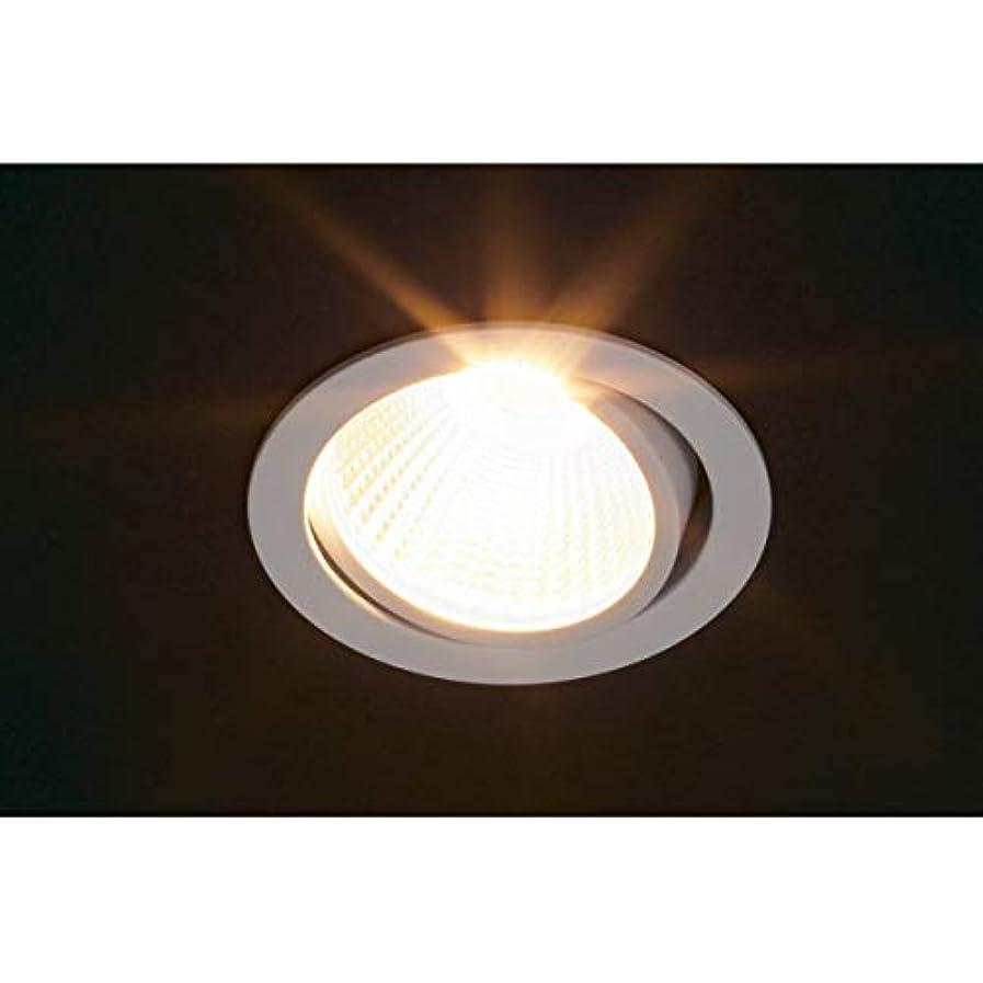 大聖堂可決ジャンプLEDライト 【Hera】 SR45-LED型 [電球色] [3000K] 照射角:40°φ50 [ステンレス調]