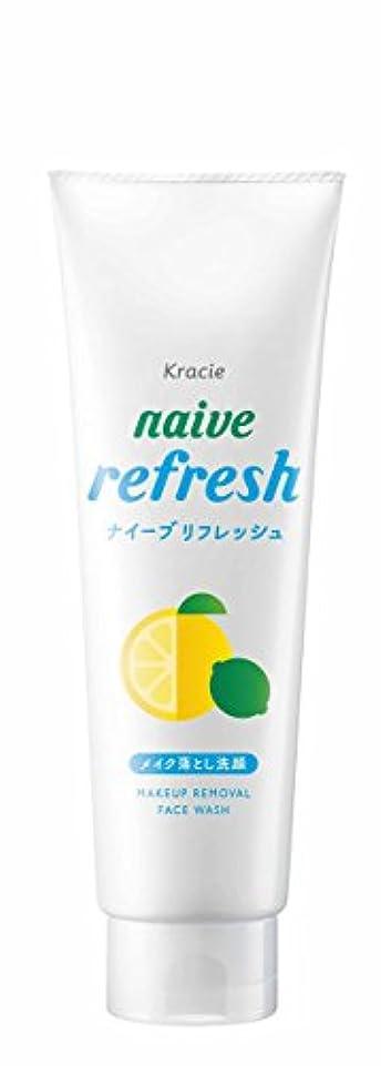 お風呂を持っている正確な中傷ナイーブ リフレッシュメイク落とし洗顔 (海泥配合) 200g
