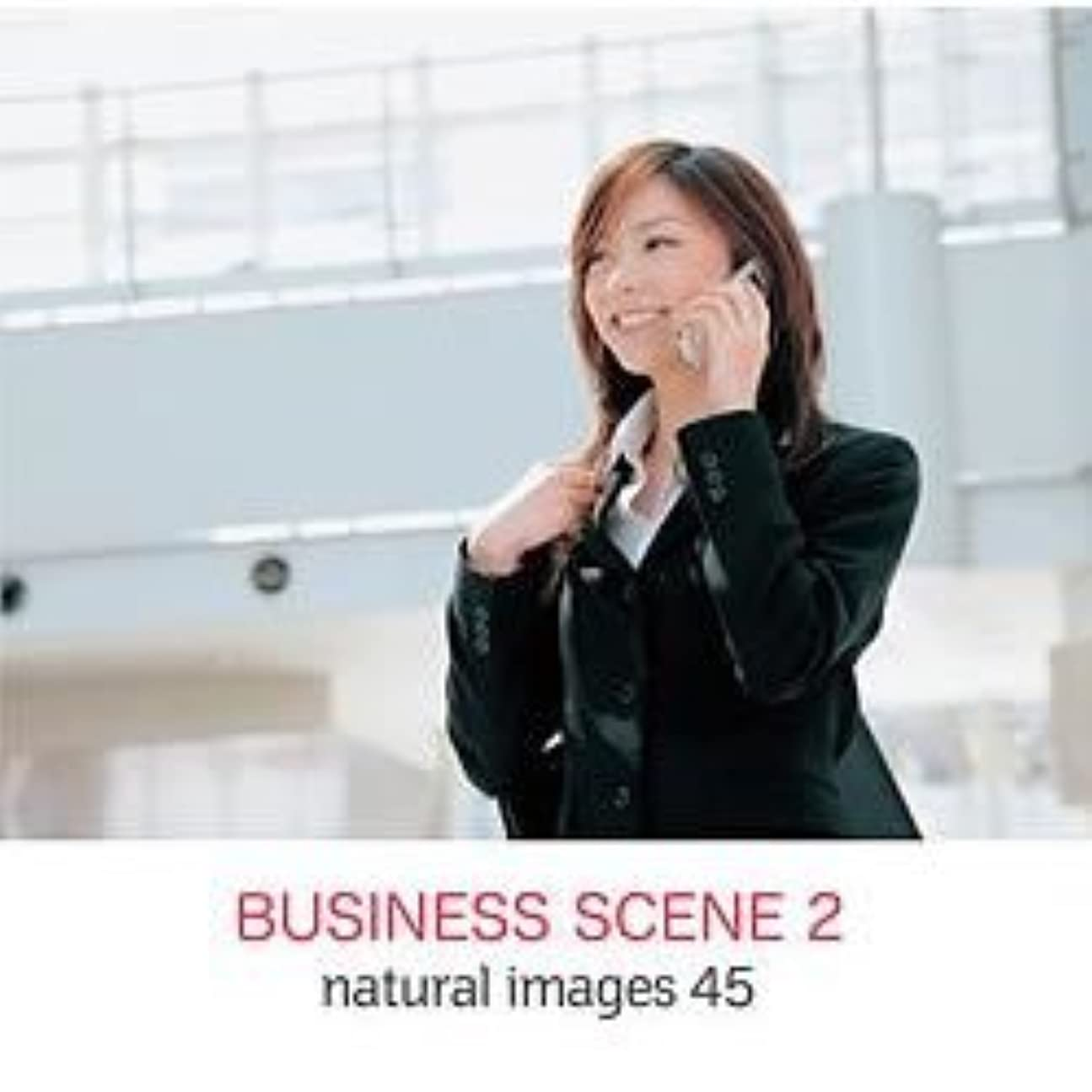 略語同行前者natural images Vol.45 BUSINESS SCENE 2