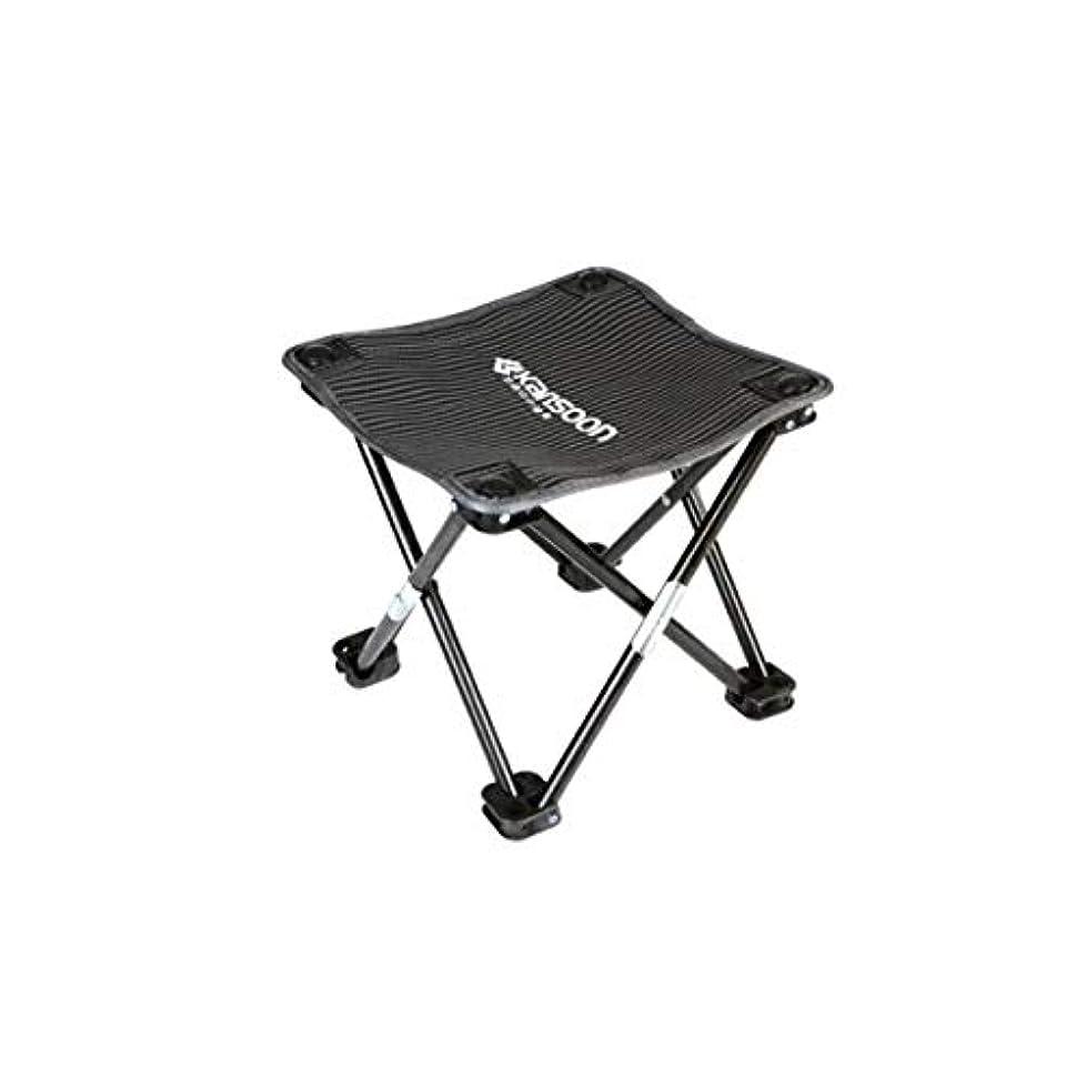 スリル岸増幅KEHUITONG 折りたたみ椅子、ポータブルスツール、シンプルな釣り椅子、アウトドアレジャーマザール、多機能小馬 (Color : Black)
