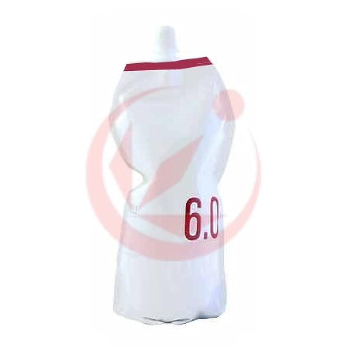 シリーズ素子おしゃれじゃないナンバースリー プロアクション リクロマ オキシ(OX) 1200ml(2剤) 6.0%*