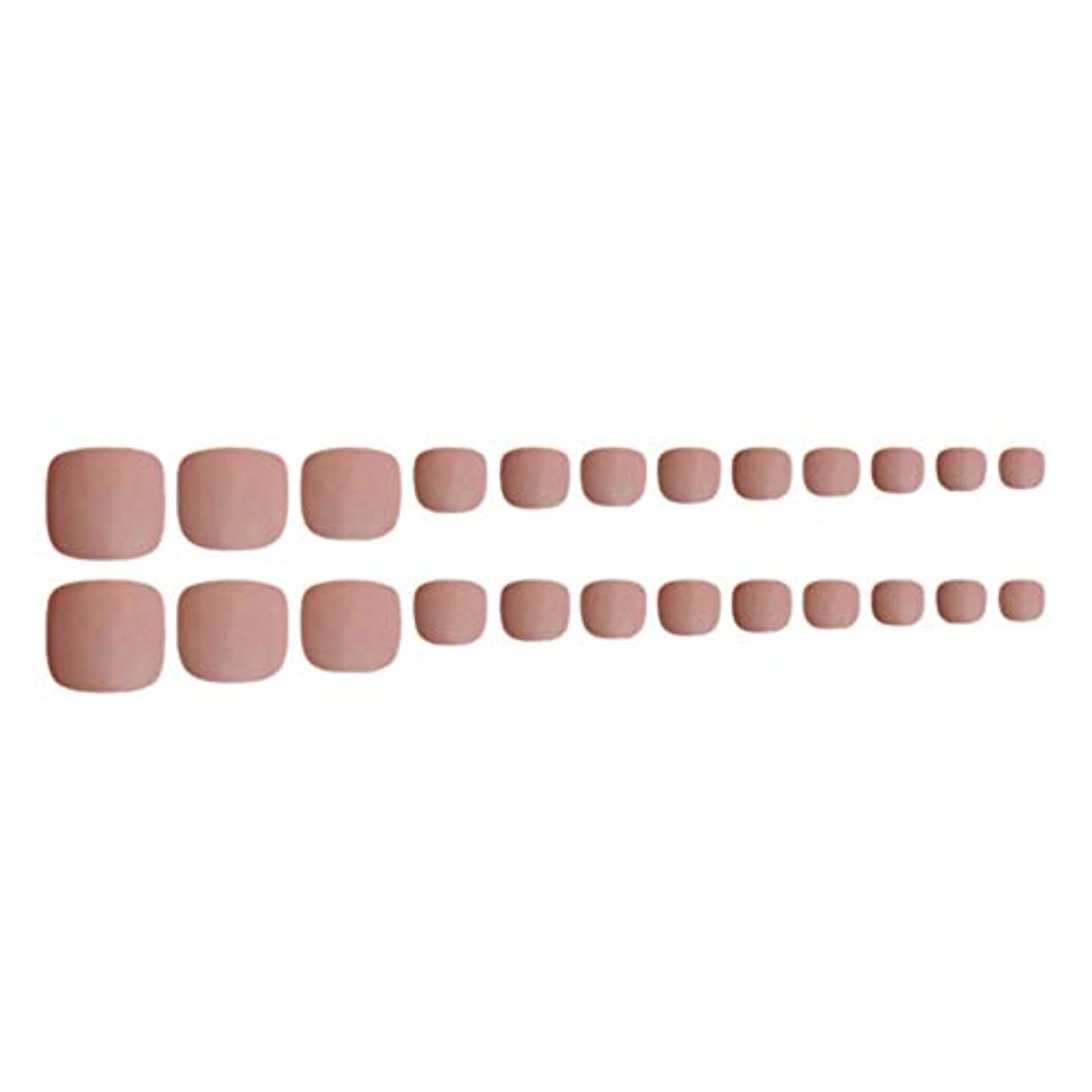 暴露孤独レベルDecdeal ネイルチップ 24ピース 12サイズ 偽つま先 ネイル用品 ネイルキャンディカラフルなプレスオントゥネイル人工ネイルアートのヒント