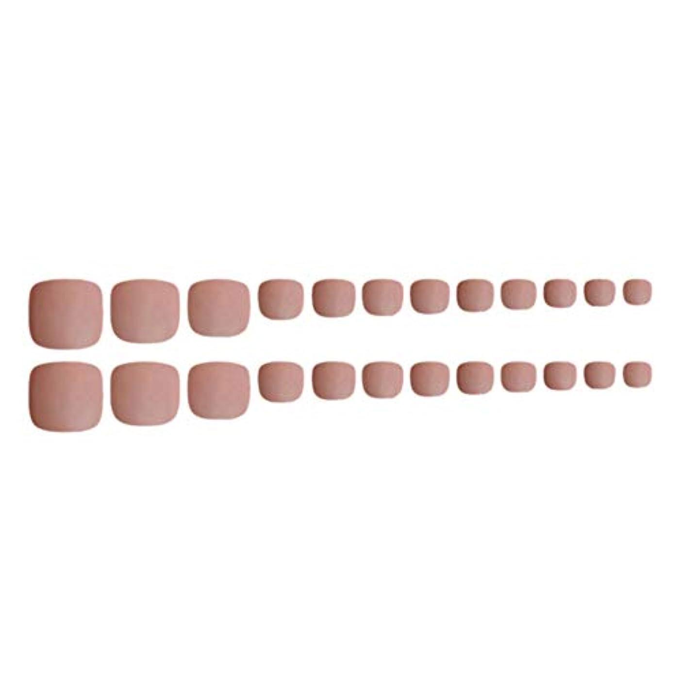 肯定的歯車痛みDecdeal ネイルチップ 24ピース 12サイズ 偽つま先 ネイル用品 ネイルキャンディカラフルなプレスオントゥネイル人工ネイルアートのヒント