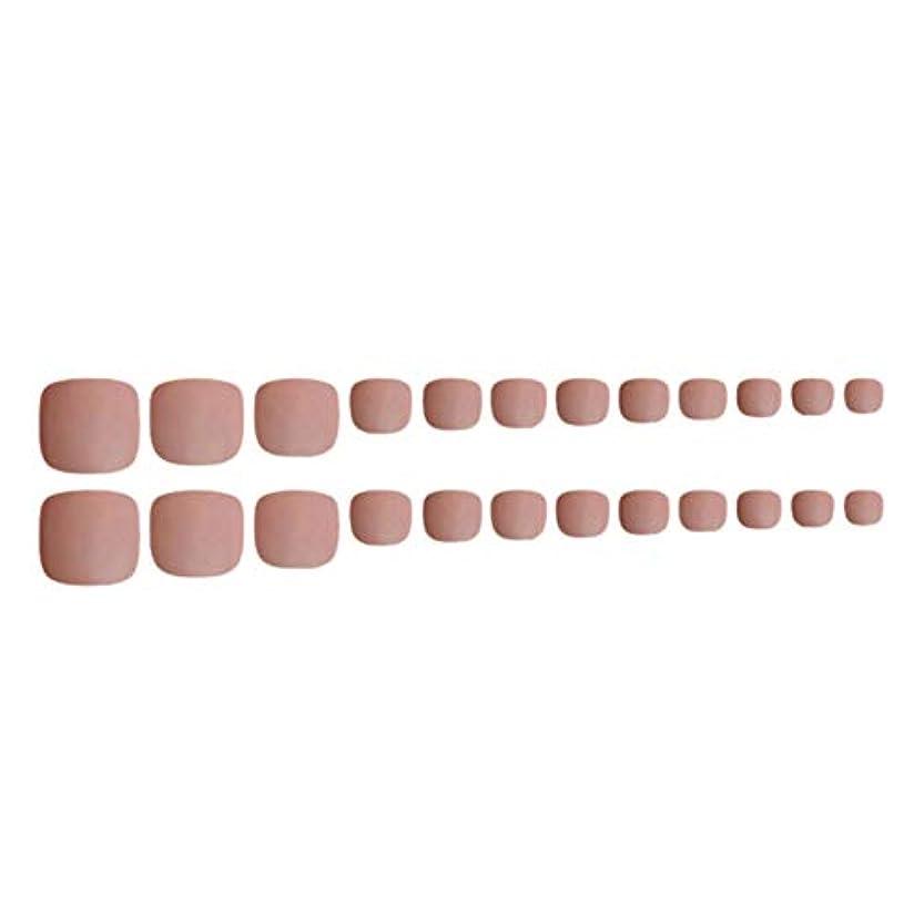 ビールキルス応じるDecdeal ネイルチップ 24ピース 12サイズ 偽つま先 ネイル用品 ネイルキャンディカラフルなプレスオントゥネイル人工ネイルアートのヒント