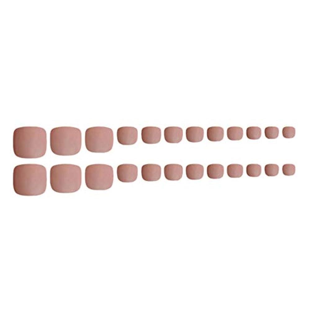 涙乱気流方向Decdeal ネイルチップ 24ピース 12サイズ 偽つま先 ネイル用品 ネイルキャンディカラフルなプレスオントゥネイル人工ネイルアートのヒント