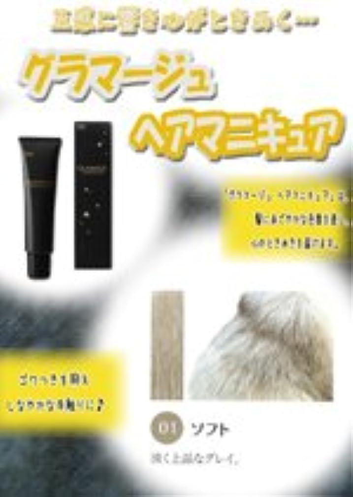 孤独潤滑する省略するHOYU ホーユー グラマージュ ヘアマニキュア 01 ソフト 150g 【モノトーン系】