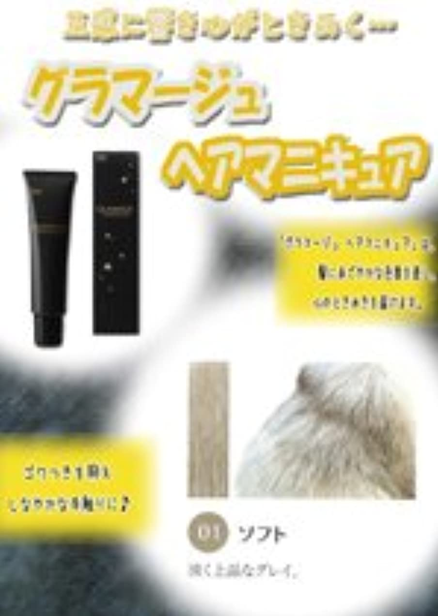 純正元気軸HOYU ホーユー グラマージュ ヘアマニキュア 01 ソフト 150g 【モノトーン系】