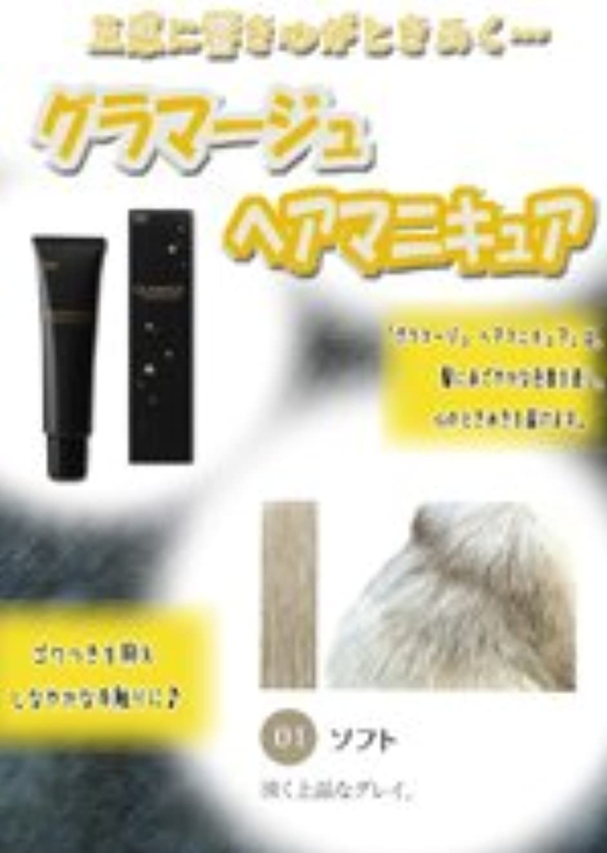 ホイスト文化冒険HOYU ホーユー グラマージュ ヘアマニキュア 01 ソフト 150g 【モノトーン系】