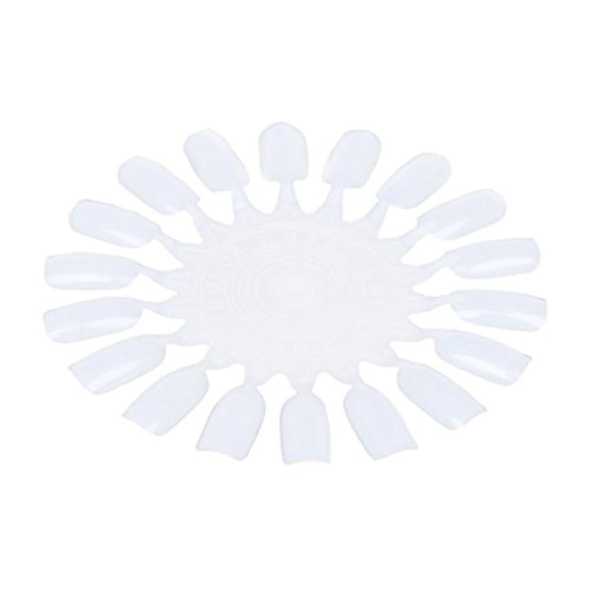 ホーン手首ビザRETYLY 10個 メークアップ化粧ネイル ポーランドカラー段ボールカラーチャート18カラー ベージュ