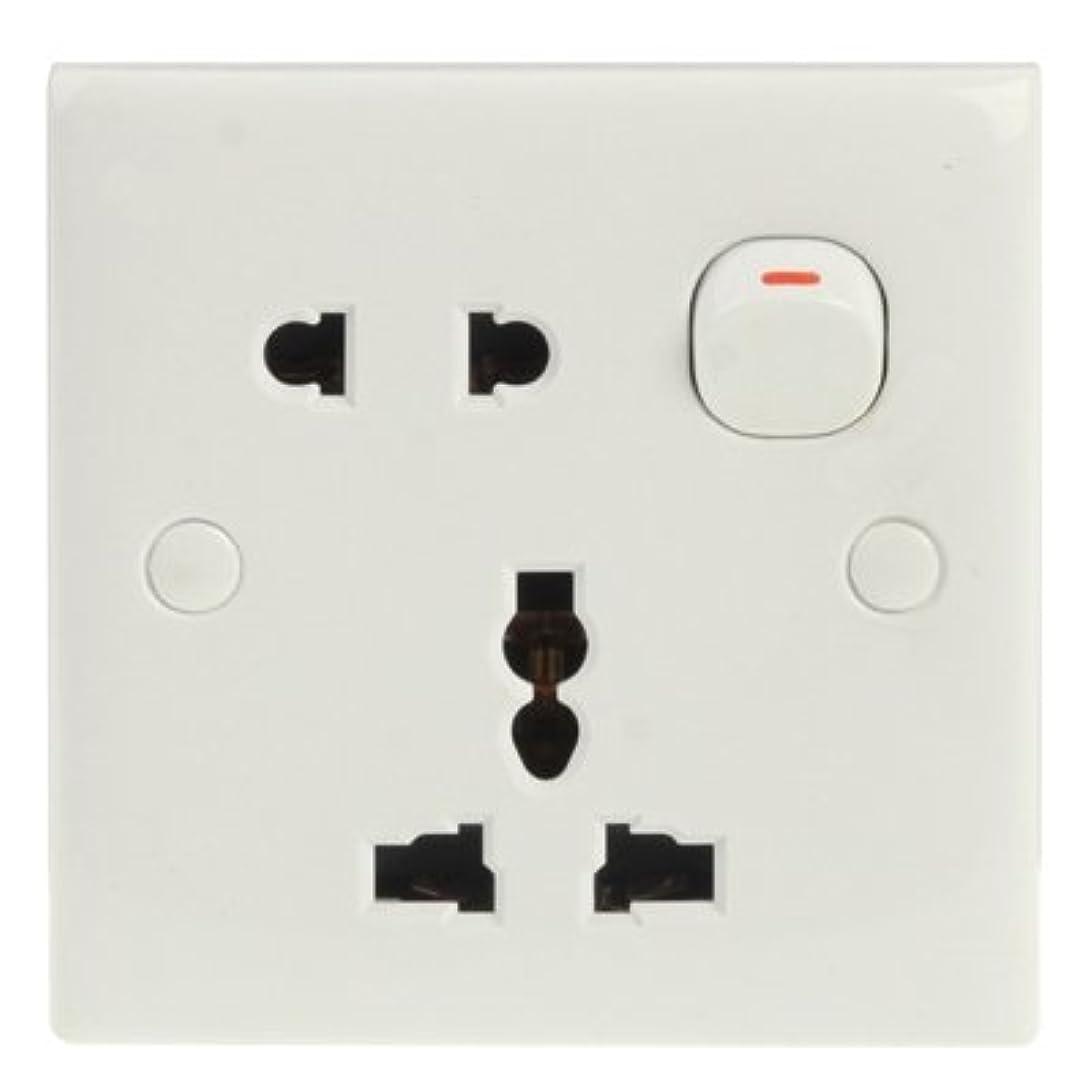 日記パンツプラカードWZY Lin電気壁スイッチとソケット、EU/AU / 1プラグ付きプラグプラグソケット