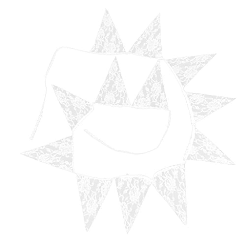 Homyl レース製 結婚式/ウェディング/誕生日用 ガーランド バナー パーティー デコレーション コットン 壁飾り 小物 装飾 小道具 白