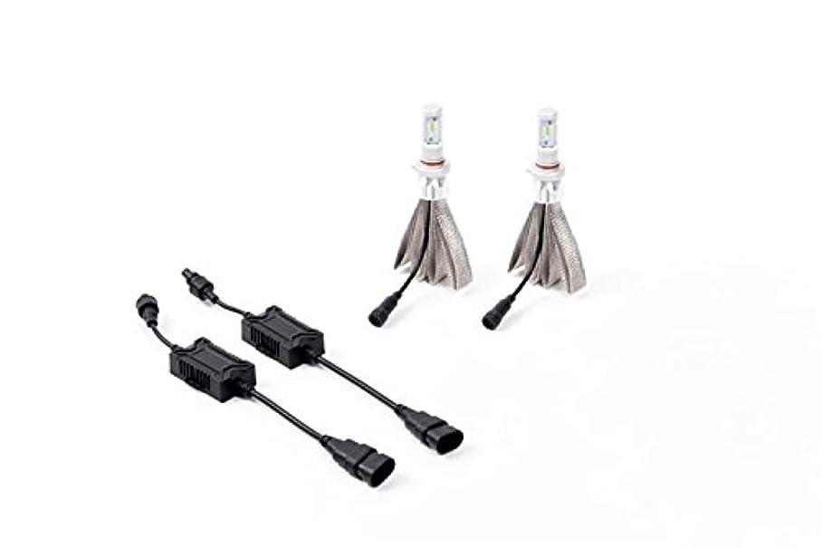 蛇行メドレー簡単にPutco 300010 H10 Silver-Lux LED Kit