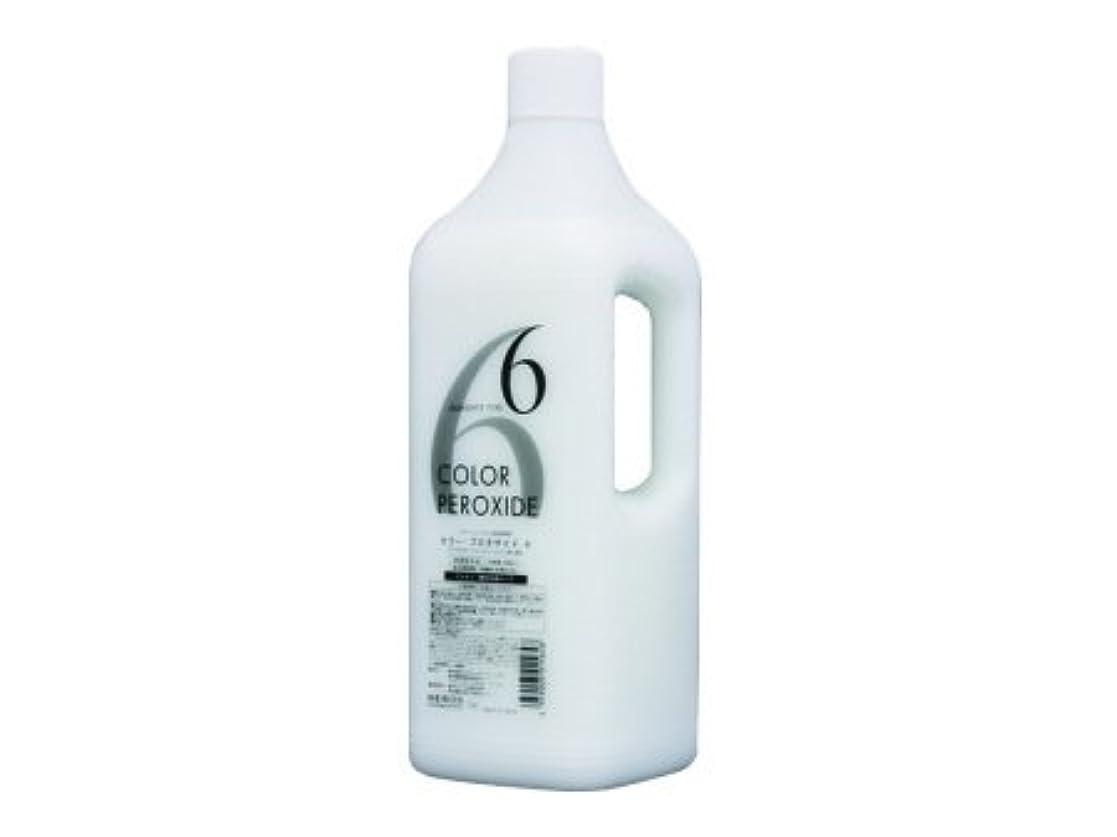 浪費朝成功したメロスコスメティックス ヘアカラーファンデーション プロキサイド?ヘアカラー用2剤 6% 2000ml