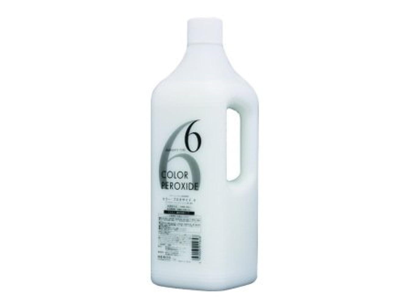 終わったマーキングクリームメロスコスメティックス ヘアカラーファンデーション プロキサイド?ヘアカラー用2剤 6% 2000ml