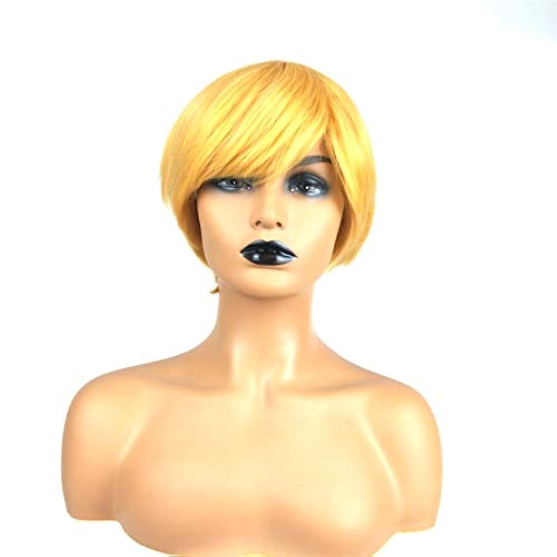 形式誰が露出度の高いSummerys ショートストレートヘア斜め前髪ショートヘア高温シルクケミカルファイバーウィッグセット