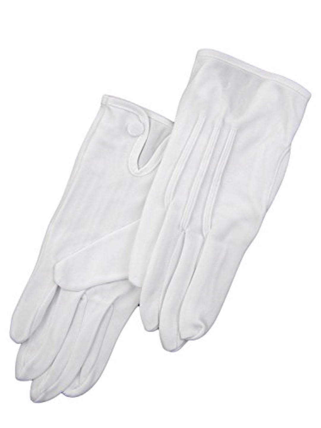 パステル分析的バンド紳士白ナイロン手袋 105 シロ M
