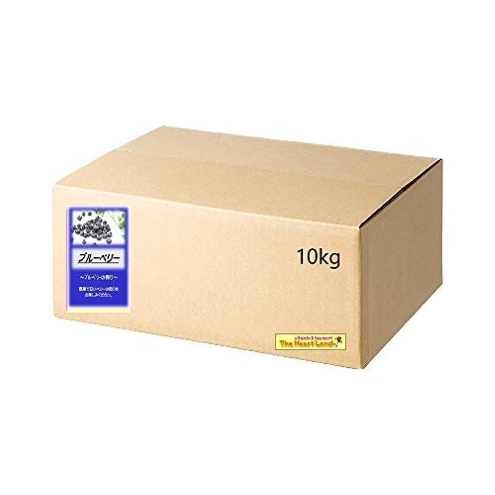 ゴミ箱引き渡す薄めるアサヒ入浴剤 浴用入浴化粧品 ブルーベリー 10kg