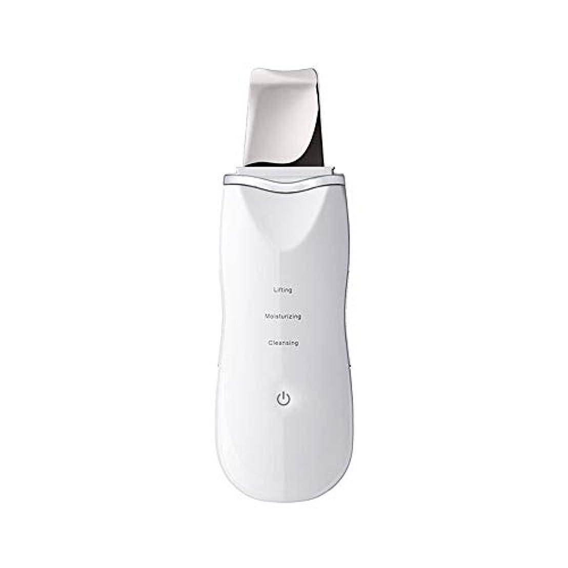 うぬぼれ可愛いローラーにきびの除去剤、気孔の洗剤の電気にきびの顔の皮のスクラバーUSBの再充電可能な皮のマッサージのスクラバー