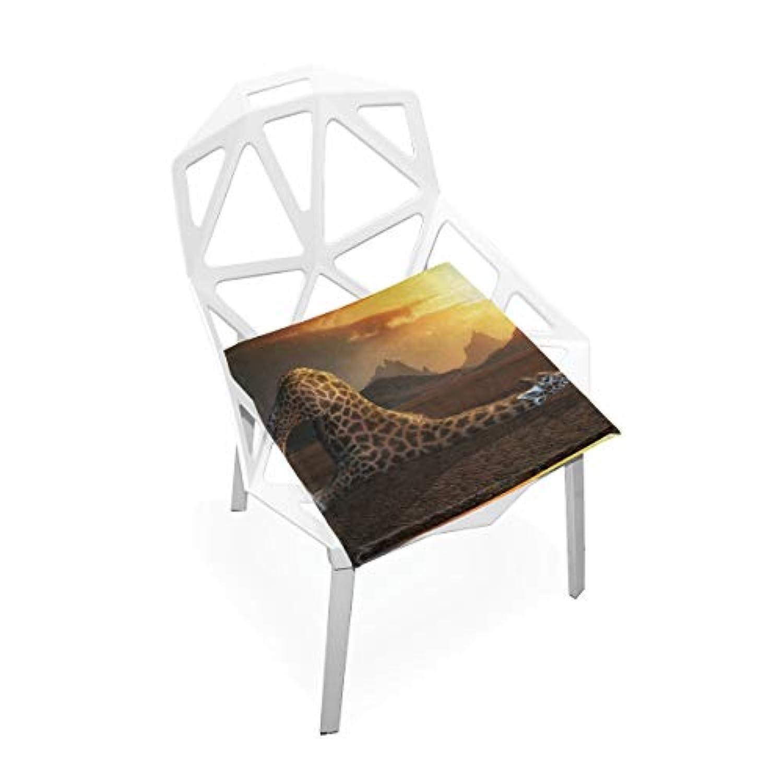 座布団 低反発 キリン 飲む 太陽 ビロード 椅子用 オフィス 車 洗える 40x40 かわいい おしゃれ ファスナー ふわふわ fohoo 学校