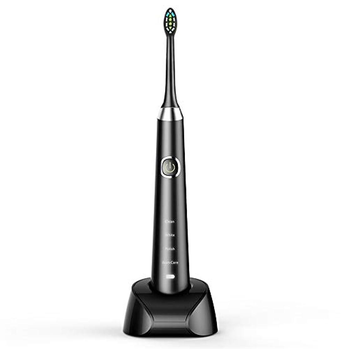 これら脈拍真っ逆さま電動歯ブラシ 日常の使用のためのUSBの充満基盤のホールダーの柔らかい毛のきれいな歯ブラシと防水電動歯ブラシ 大人と子供向け (色 : ブラック, サイズ : Free size)