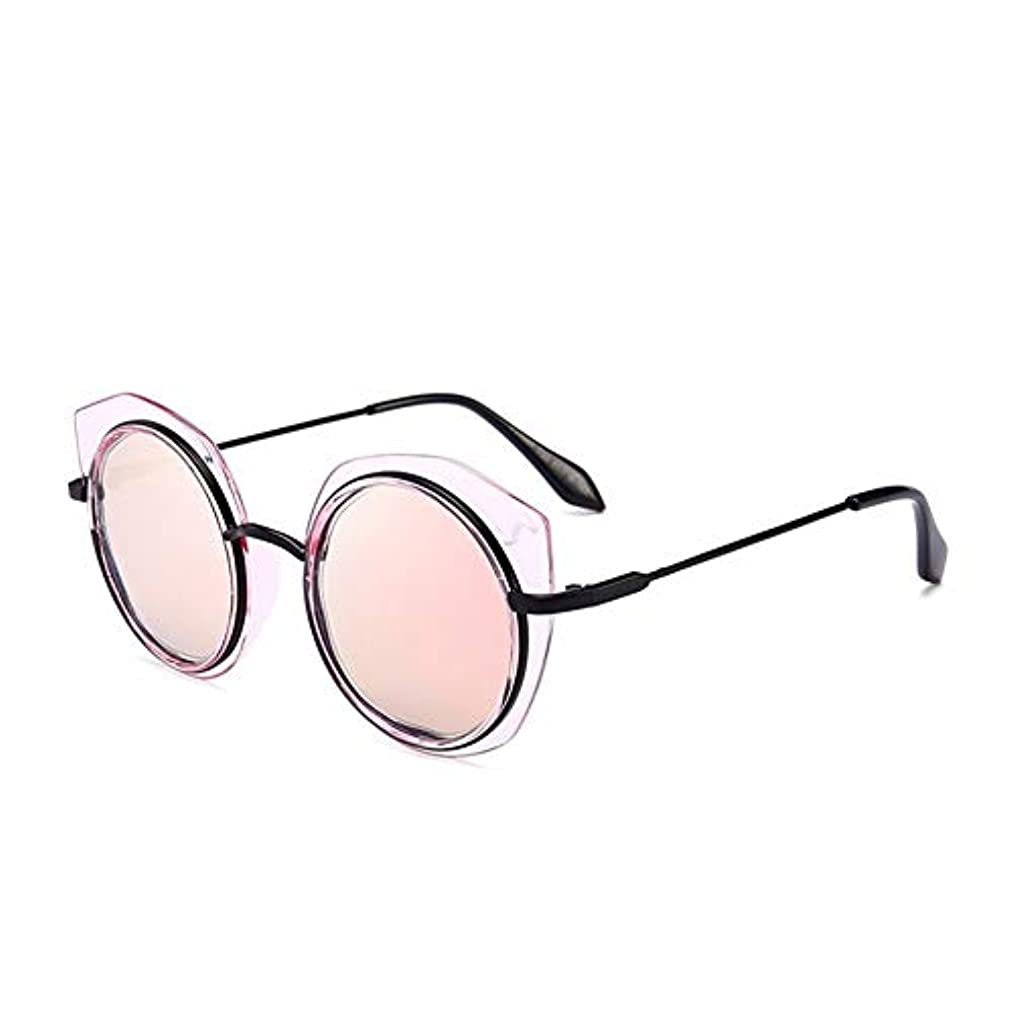 服鉱石高音Q AI NI ファッション不規則な猫の目花偏光もメガネ 毎日の旅行用サングラス (Color : Powder)