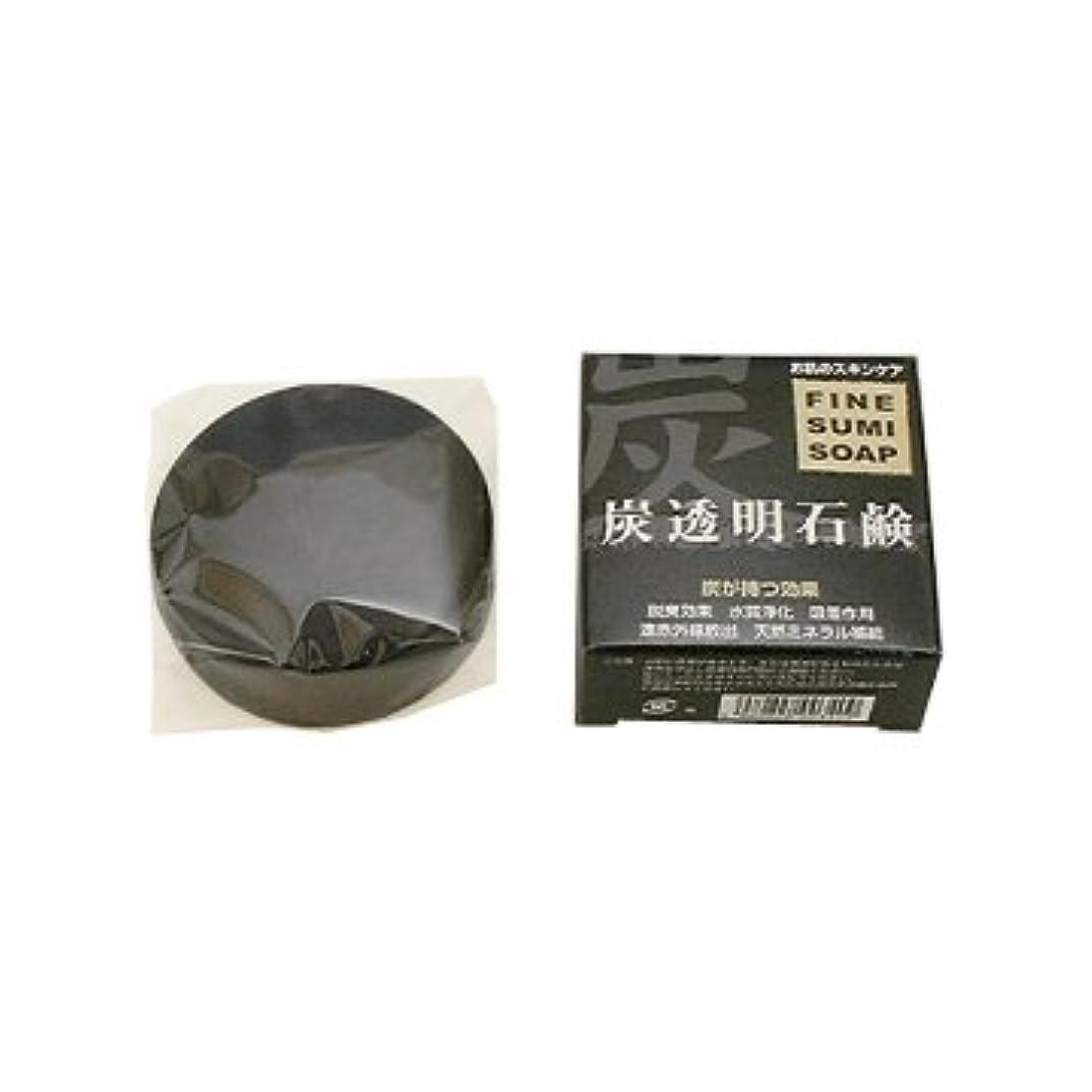 高速道路電圧気を散らす阪本高生堂 ファイン ソープBL薬用炭美容石鹸 100g(枠練)