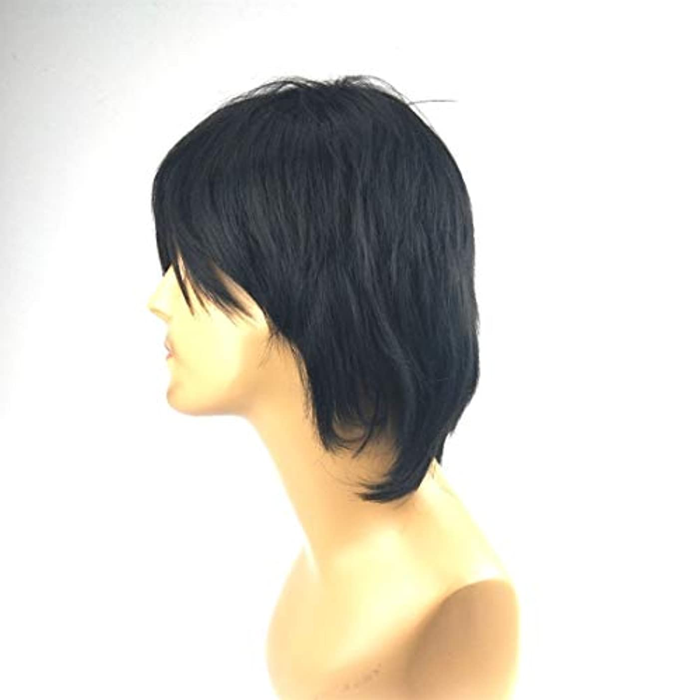 スペースお父さん高価なKerwinner 斜め前髪付きメンズショートストレートヘアシルクケミカルファイバーウィッグ