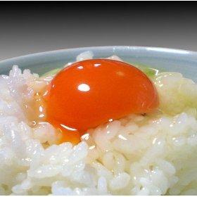 まんげつ濃厚卵6個入り5パック1セット (計30個) [その他]