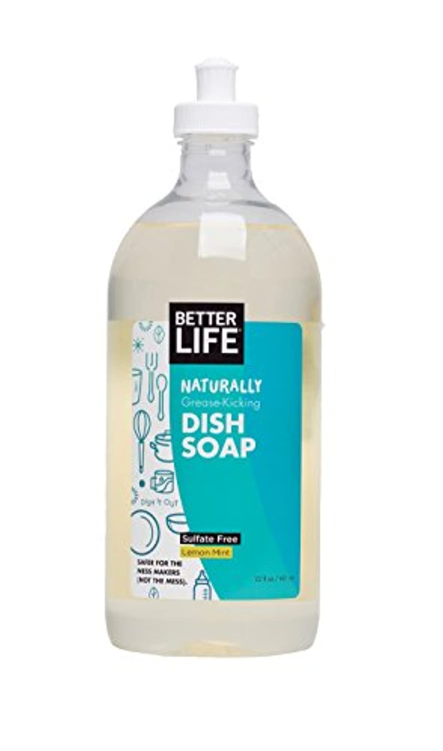 検査答えラフト海外直送品Natural Liquid Dish Soap Clary Dish It Out, Sage and Citrus 22 oz by Better Life
