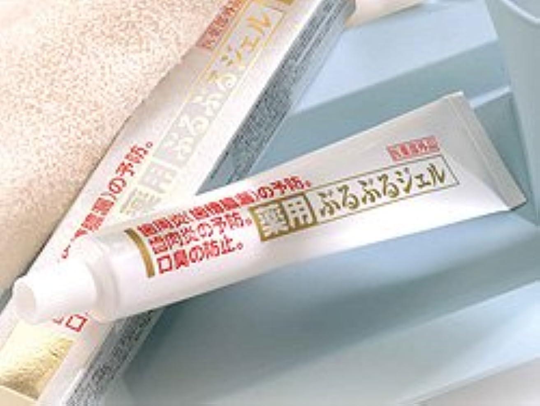 試験文明乏しい薬用ぶるぶるジェル(医薬部外品) 60g 0004132
