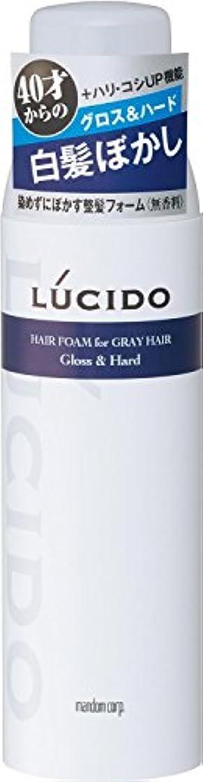 お手入れペアクリープルシード 白髪用整髪フォーム グロス&ハード 185g×2