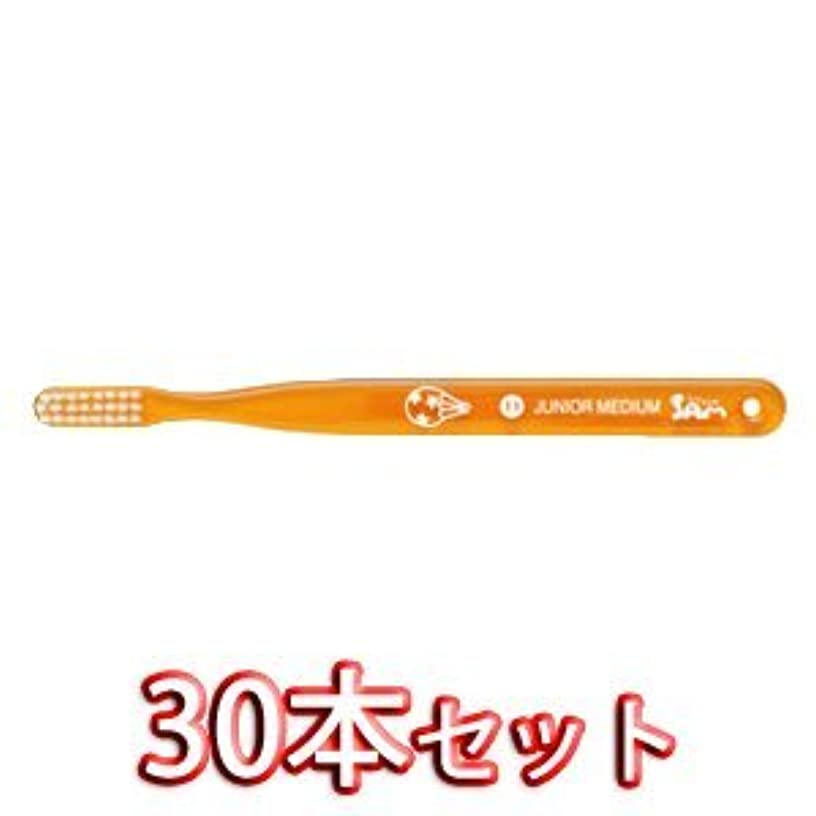 お願いします駐地冷笑するサムフレンドベーシック 歯ブラシ 30本入 11